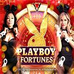 Playboy Fortunes ™
