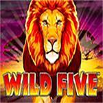 Wild Five